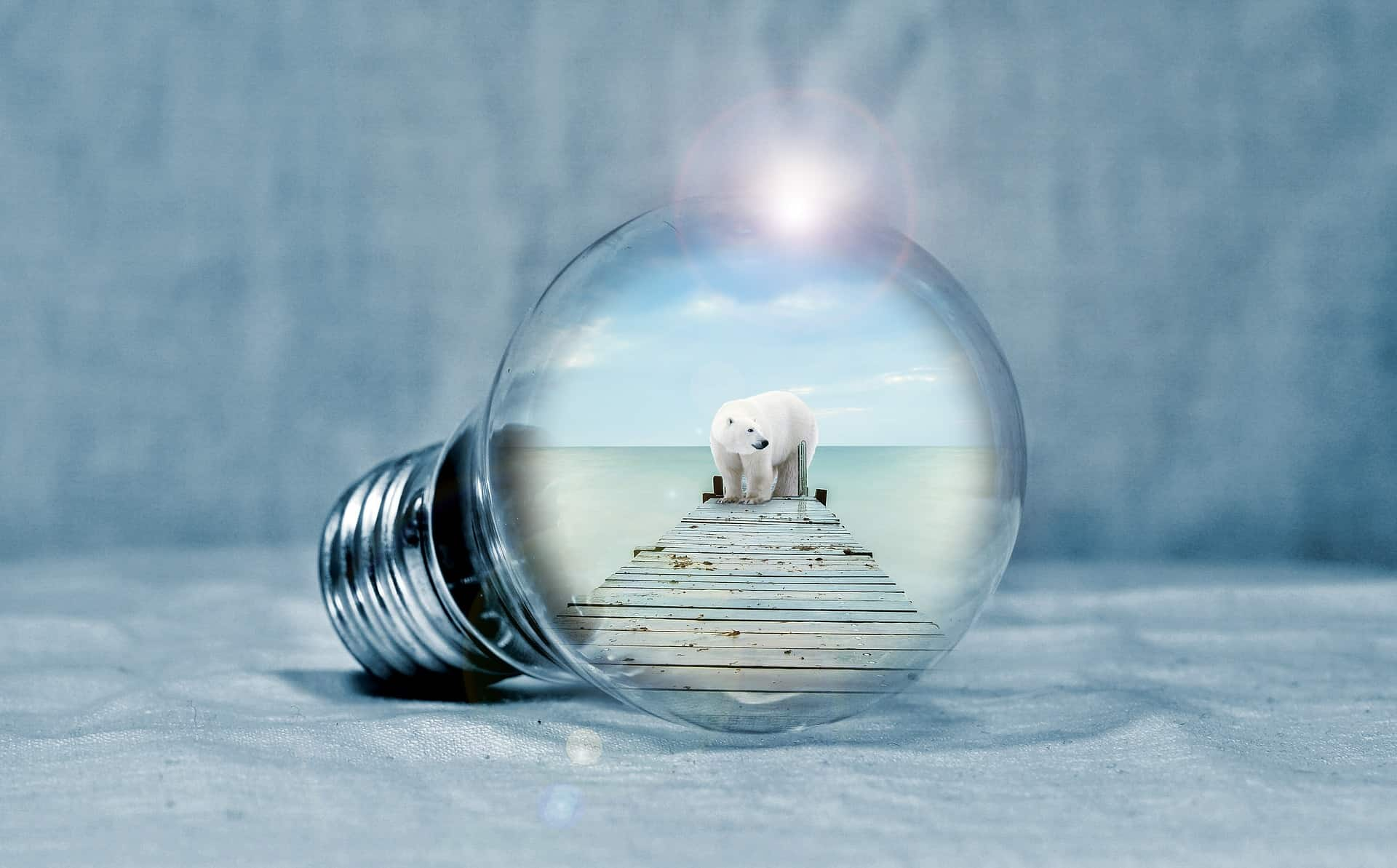 shining bulb  on ice