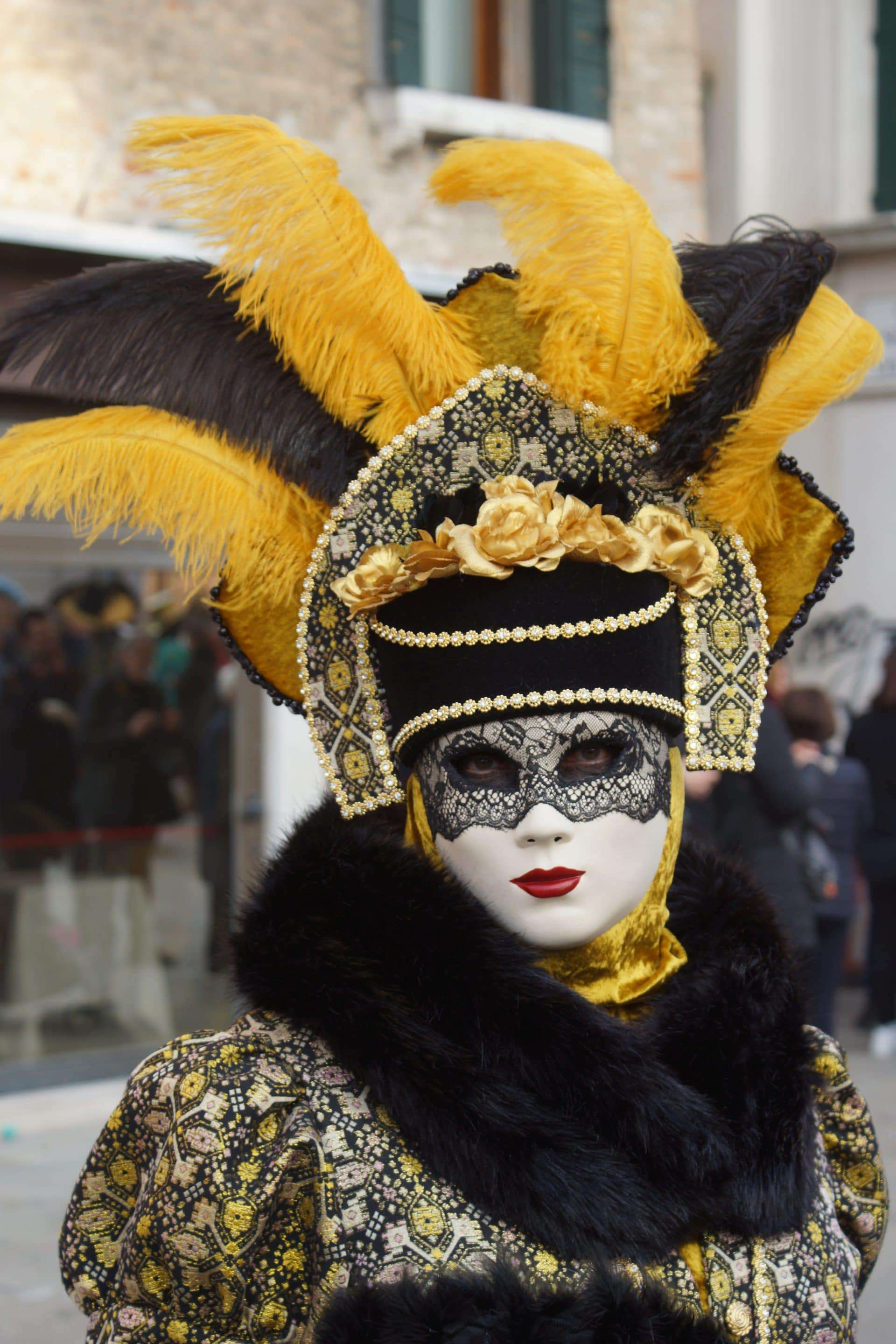 Person wearing a fancy costume and a mask with a feather headdress